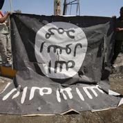 Djihadistes : plus de 240 «revenants» en France depuis 2012, dont la moitié en prison