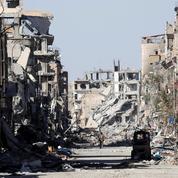 Nicolas Baverez : «Le califat est mort, pas le djihadisme»