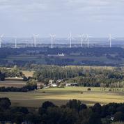 Selectra et Mint Energie proposent une offre d'électricité verte à prix cassé
