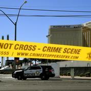 Tuerie de Las Vegas: un expert va analyser le cerveau du tueur