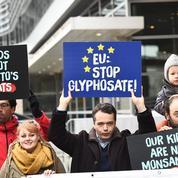 Pas d'accord européen pour prolonger l'usage du glyphosate