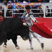 Entre la SPA et les aficionados de chasse et de corrida, la guerre est déclarée