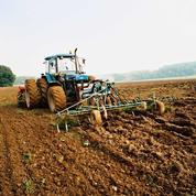 Le revenu des agriculteurs français retrouve des couleurs