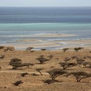 A Djibouti, l'influence française doit faire face à l'offensive de la Chine