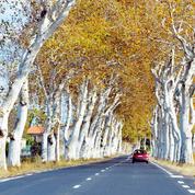 Sécurité routière : Matignon confirme la limitation à 80km/h sur le réseau secondaire