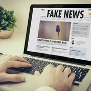"""Chantal Delsol : «Comment punir les """"fake news"""" sans instaurer une police de la pensée ?»"""