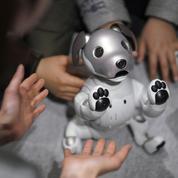 Pourquoi les robots sont-ils mignons ?