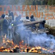 Éric Delbecque : «L'extrémisme des zadistes affaiblit la démocratie»