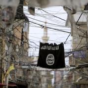 L'éditorial du Figaro : «Revenants du djihad et soldats du mensonge»