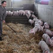 Macron face aux quatre plaies de l'agriculture française