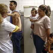 Le Brésil tente d'enrayer la fièvre jaune