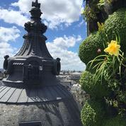 Paris sous les fraises: 10.000 m2 de jardins sur les toits