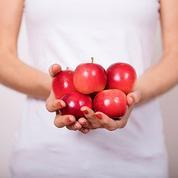 La pomme miniature arrive en France