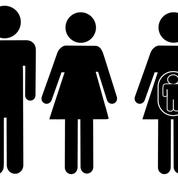 «Une convention sur la GPA risque de légitimer l'illégitime»