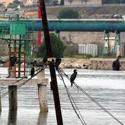 La remontée de l'or noir fait les affaires des groupes pétroliers