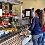 Cantines scolaires : un repas végétarien n'est pas toujours meilleur pour la planète