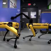 Le robot quadrupède de Boston Dynamics sait désormais ouvrir des portes