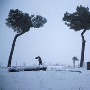 Guillaume Perrault : «Le froid sibérien, le climat et l'histoire»
