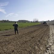 Agriculture et biodiversité ne sont pas forcément incompatibles