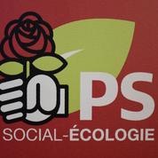 Inexactitudes, novlangue : les perles des manifestes des candidats PS