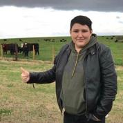 Turquie : un escroc fait fortune en vendant des vaches virtuelles