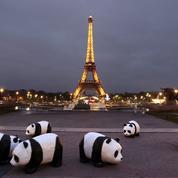 Samedi, des villes éteindront les lumières pour la biodiversité