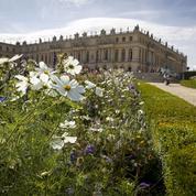 Versailles, Chantilly, Fontainebleau: six idées de week-ends autour des châteaux