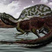 Le menu des dinosaures du Crétacé révélé par le calcium