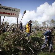 Notre-Dame-des-Landes : le Département saisit la justice pour récupérer ses terres