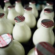 Prix du lait : le casse-tête des industriels pour mieux rémunérer les éleveurs