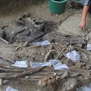 Un rhinocéros dévoré par des hommes il y a 700.000 ans aux Philippines