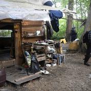 Notre-Dame-des-Landes : les opérations d'expulsion ont repris