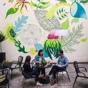 Le Belleval, havre de paix botanique à Paris