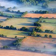 Biodiversité : Le monde paysan en première ligne