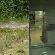 Un bunker de la Seconde Guerre mondiale découvert dans un jardin de Middlesbrough