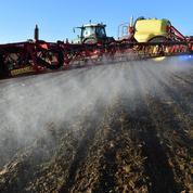 Glyphosate: la gauche et les écolos dénoncent les atermoiements du gouvernement