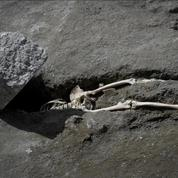 Découverte à Pompéi d'un homme écrasé par un rocher dans sa fuite loin du Vésuve en éruption
