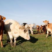 L'agriculture française peut-elle se passer de la PAC?