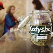 Les buralistes en pole position pour vendre du cannabis