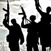 «Il y a, dans l'islamisme combattant, une connaissance profonde des faiblesses humaines»