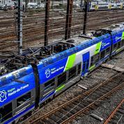 Hauts-de-France: des réservistes pour sécuriser les TER