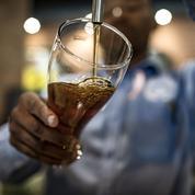 Journée mondiale de la bière: la France dans le ventre mou des pays producteurs