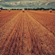 Malgré la canicule, Bruxelles exige des semis inutiles et dangereux