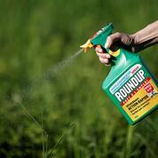 Le glyphosate, un produit pas si facile que cela à remplacer