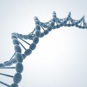 Avec l'ADN, l'histoire se lit dans nos gènes