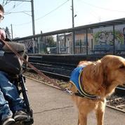 L'étudiant handicapé qui poursuivait la SNCF pour discrimination a été débouté