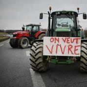Pourquoi un agriculteur se suicide tous les deux jours en France?
