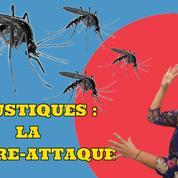 Comment soulager les piqûres de moustiques ?