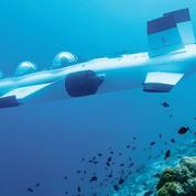 Le voyage réinventé : dans les profondeurs des Maldives, à bord du sous-marin ailé