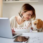 Un congé parental pour les salariés qui accueillent un animal de compagnie